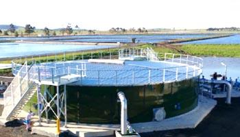 Filtered Water Storage Tank
