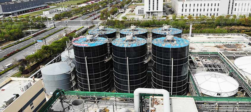 Anti-typhoon Design Storage Tanks