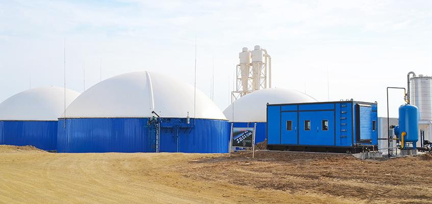 biomass project