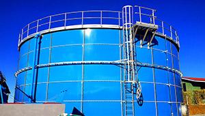vertical cage ladder